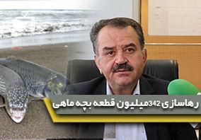 رشد 106 درصدی رهاسازی ماهی در دریای خزر