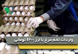واردادت تخم مرغ با ارز4200 تومانی