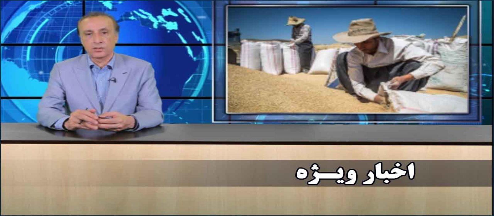 اخبار ویژه کشاورز پلاس، با گویندگی محمد رضا حیاتی ۱۶ تیر ۱۳۹۸